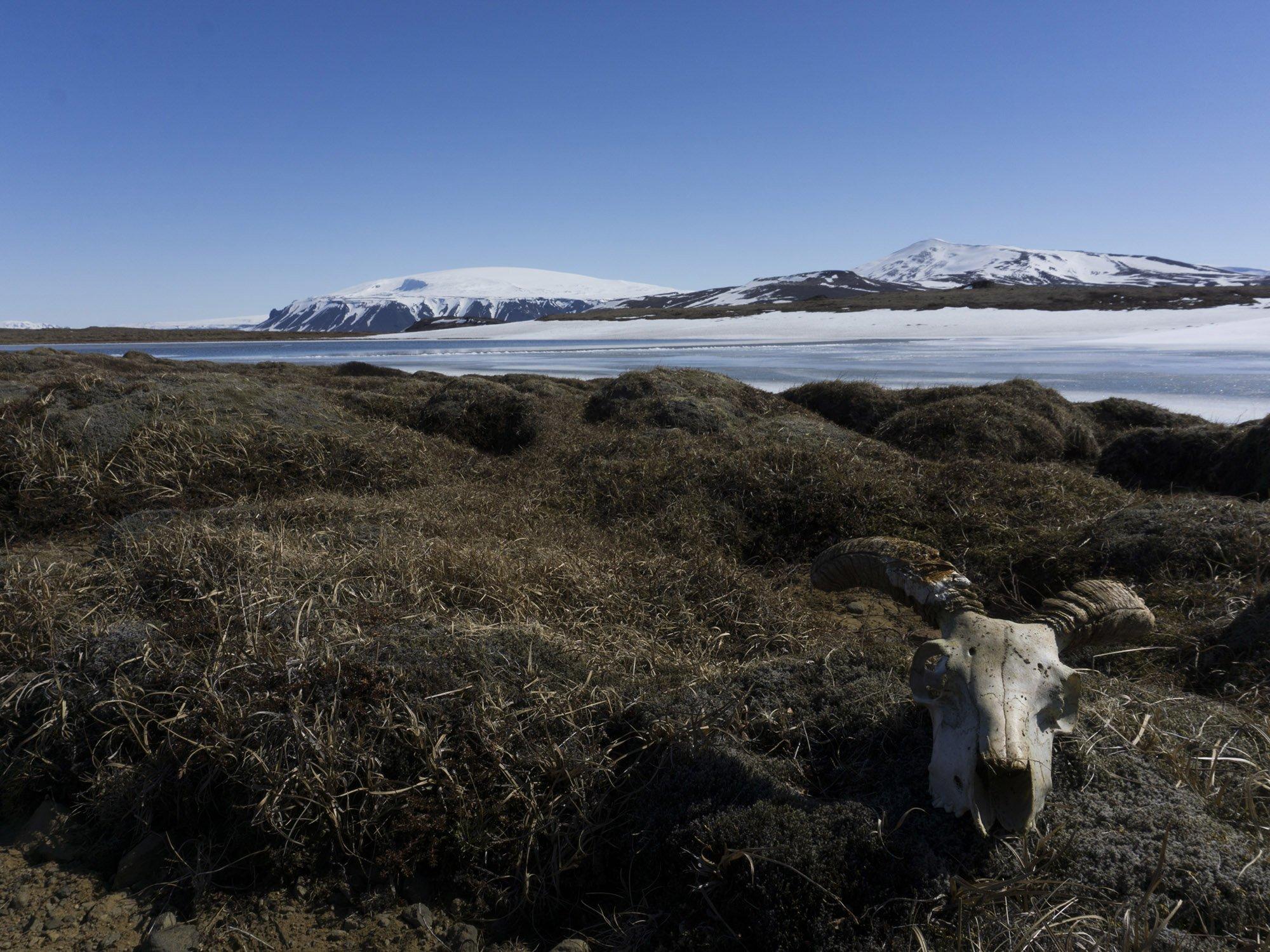 Maio na Islândia: 22 horas de sol e média de três graus negativos *Arquivo pessoal*