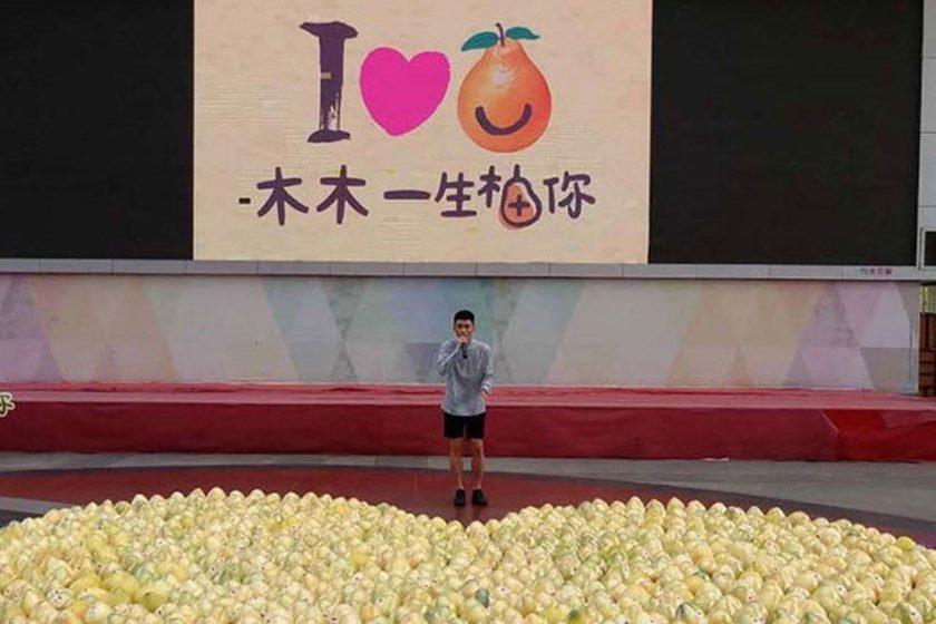 China.org.cn/Reprodução