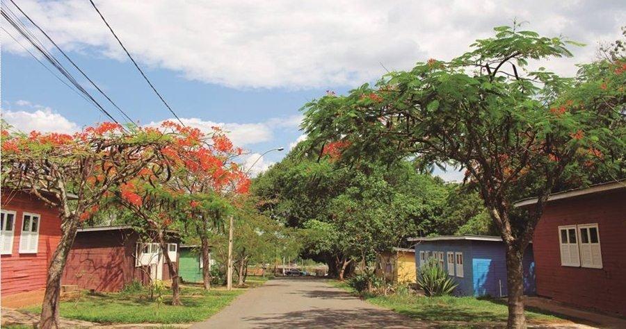 ARPDF/Divulgação