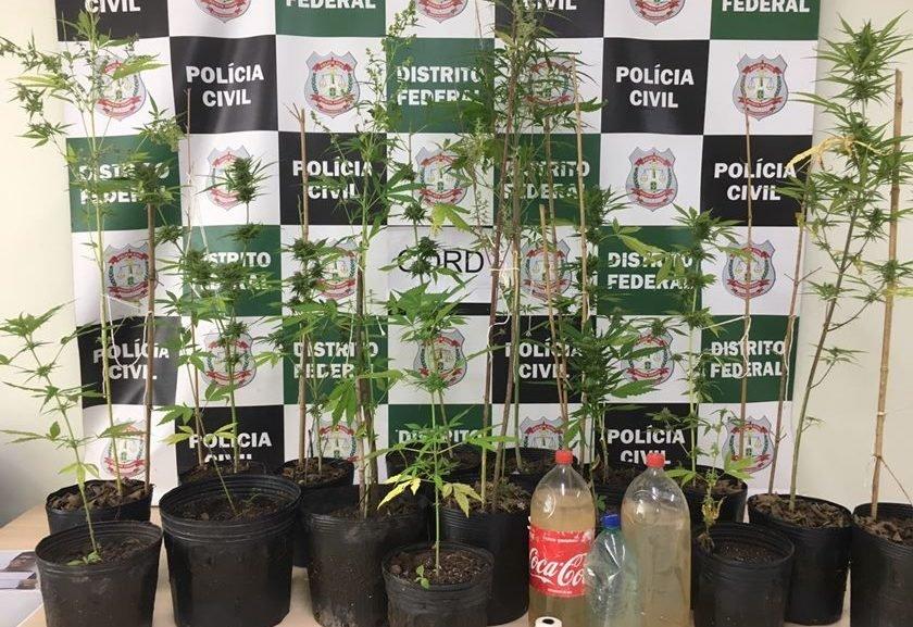 Polícia Civil prende estudantes que plantavam maconha dentro de universidade