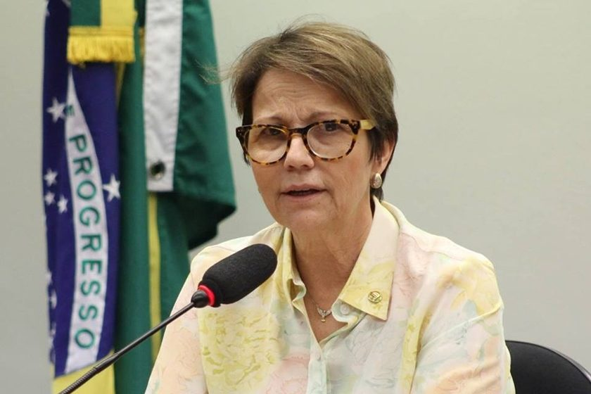 Resultado de imagem para ministra da agricultura tereza