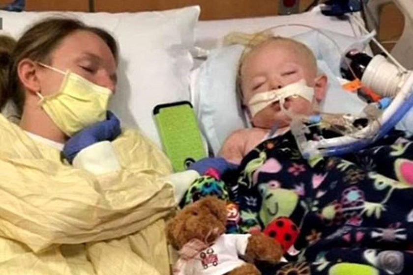 Criança de 2 anos morre após ser picada por carrapato d21317e99b6a2