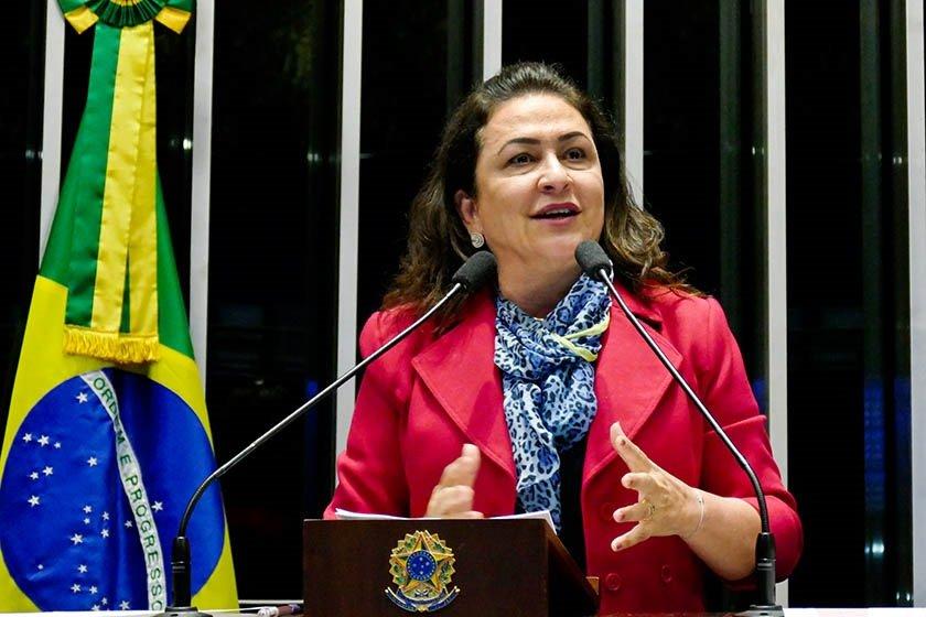 Senadora Kátia Abreu (PMDB-TO), no Plenário do Senado