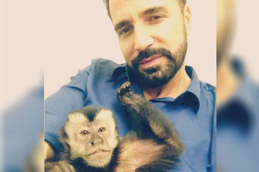 Macaco de Latino desaparece e cantor, aos prantos, faz apelo por ajuda