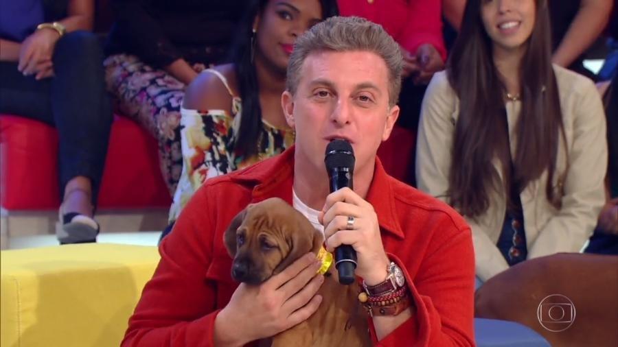 Globo/Divulgação