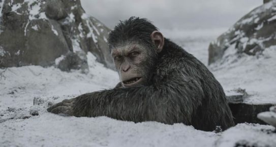 """""""Planeta dos Macacos"""": """"A Guerra"""" fecha ciclo da melhor franquia ..."""