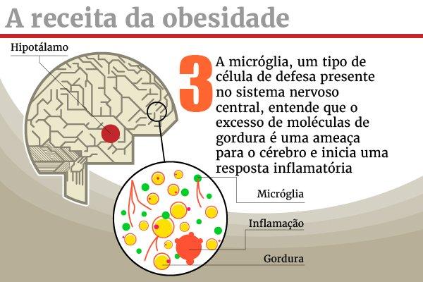 galeria_receita_obesidade_3-100