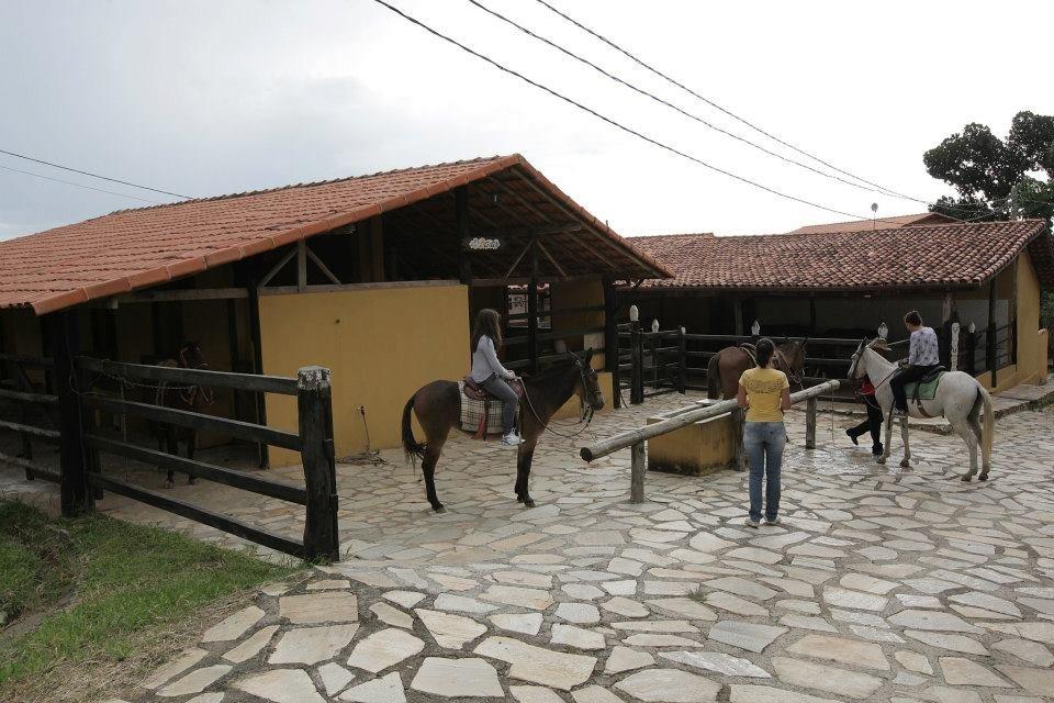 vila velluti cavalos