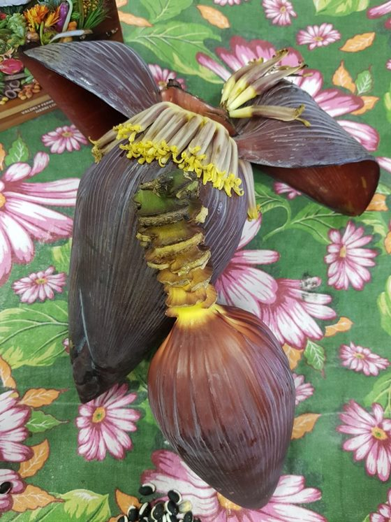 Coração de bananeira_Foto Layse Ennes