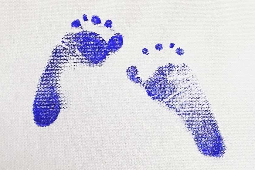 A Chegada De Um Bebê Na Família Sempre Desperta Um Sentimento Mágico