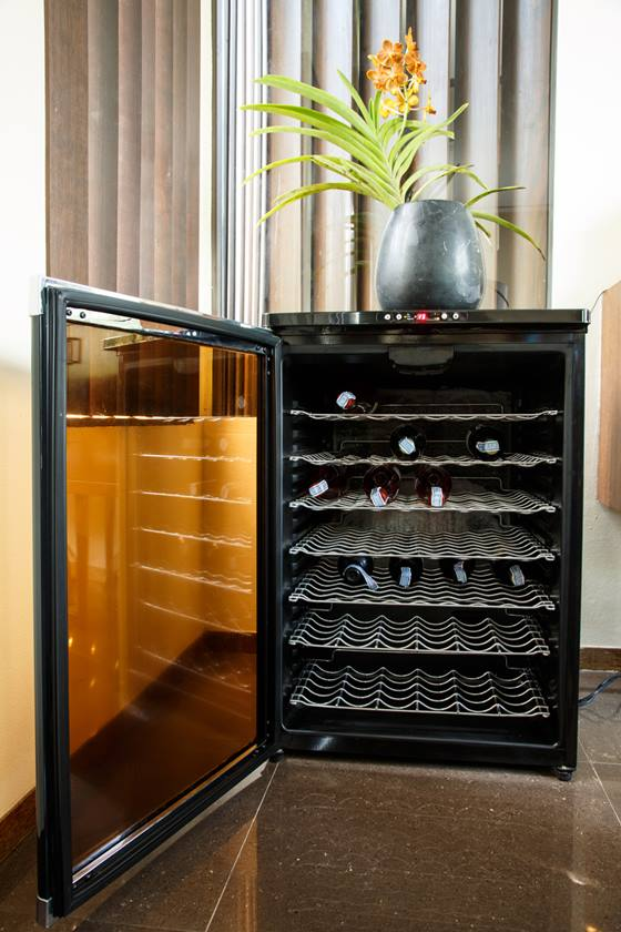 Wine cooler with multiple bottles