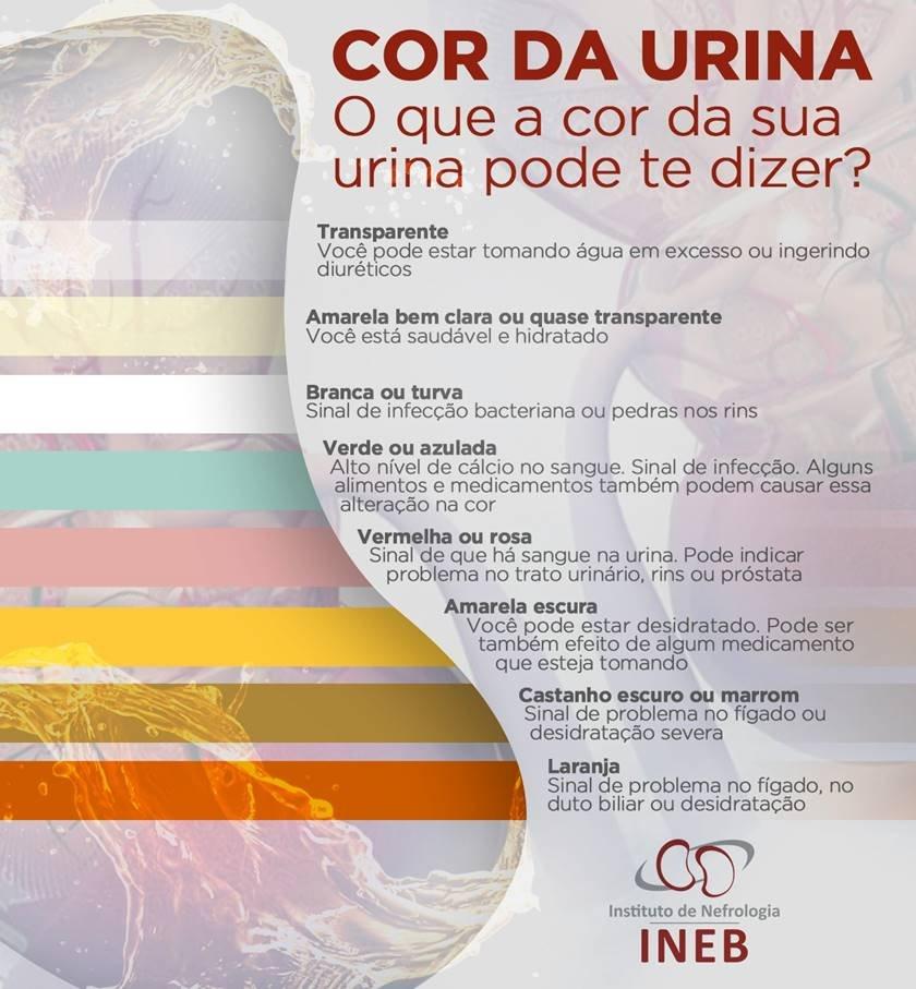 INEB/Divulgação