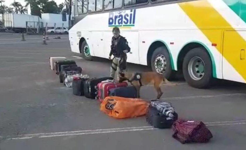 PRF/Divulgação