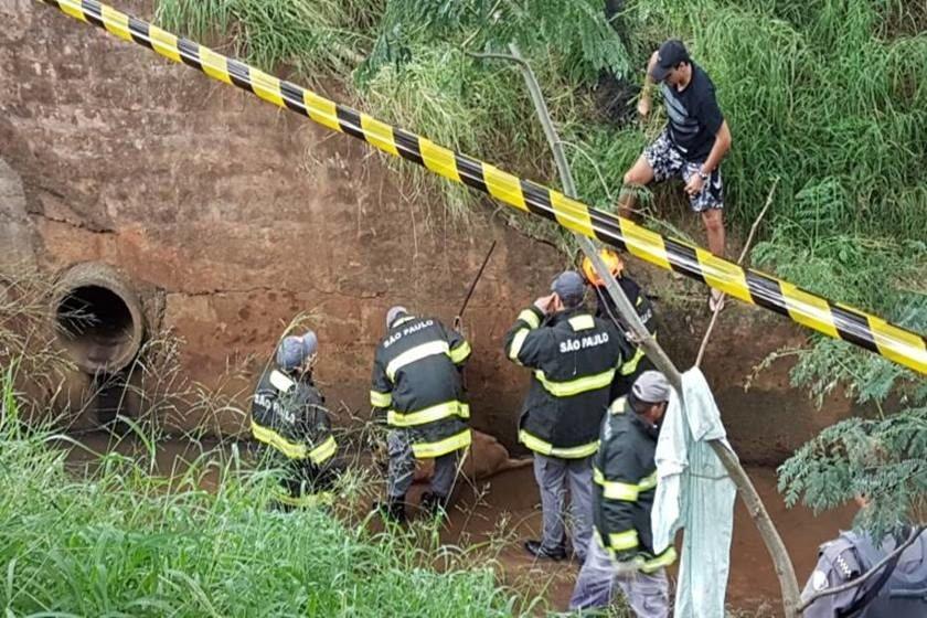 Polícia Militar Ambiental/Divulgação