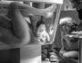 Marijke Thoen Geboortefotografie/Divulgação