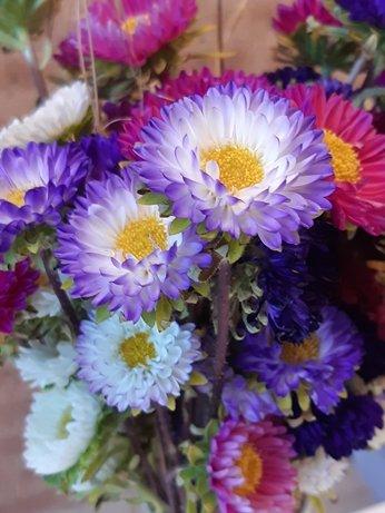 Flores - cores
