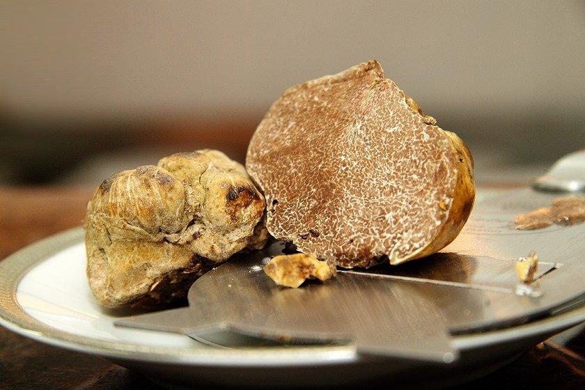 white truffles on the dish