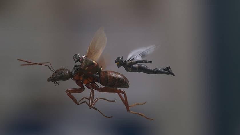 homem formiga e a vespa12