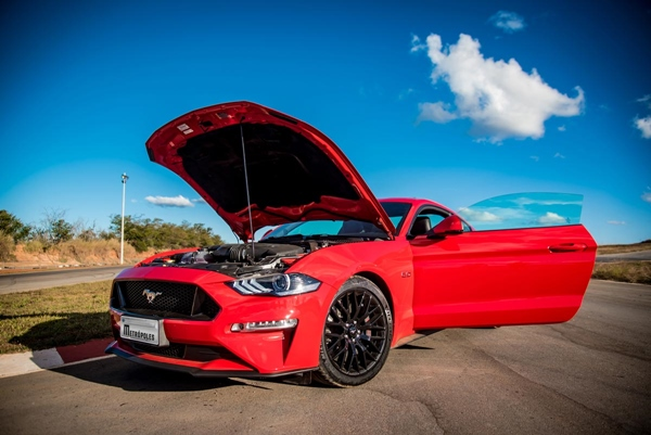 Mustang_9