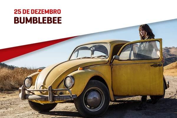 29-Bumblebee