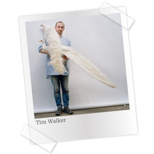 Divulgação/Tim Walker