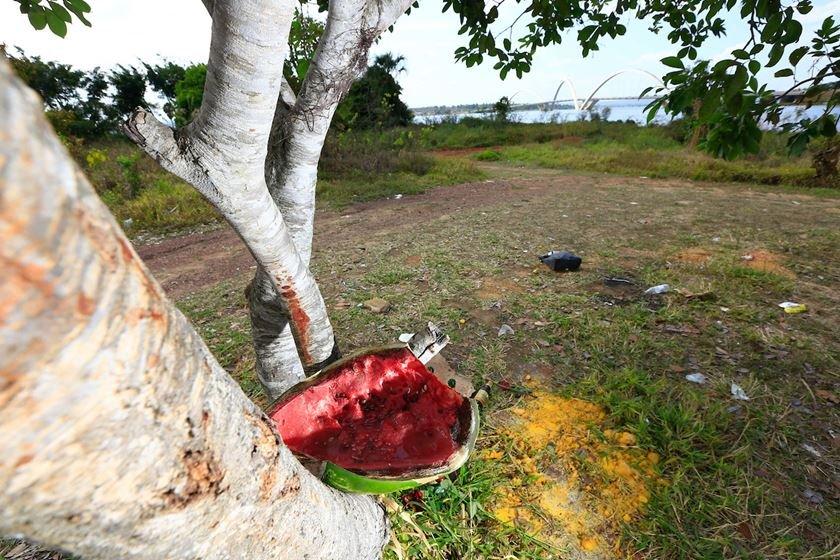 DF na real - desobstrução da orla do Lago Paranoá