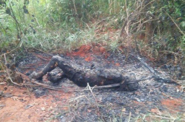 adolescentes matam e queimam homem em Samambaia