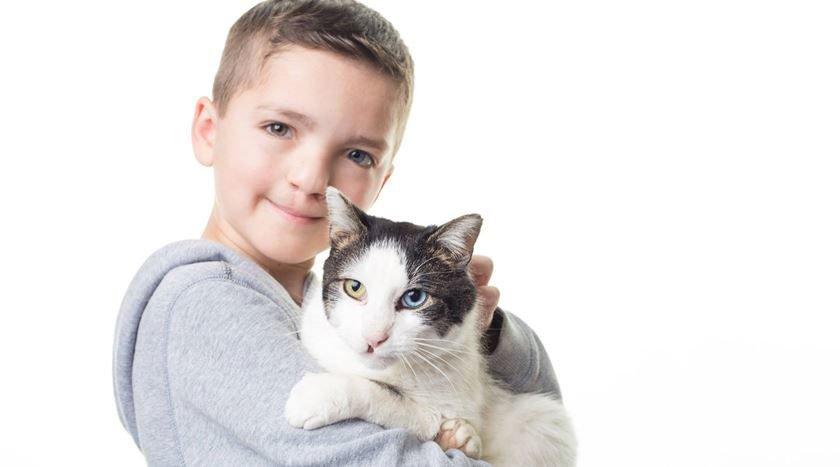 Resultado de imagem para Garoto sofre bullying com aparência e adota gato com mesma alteração genética