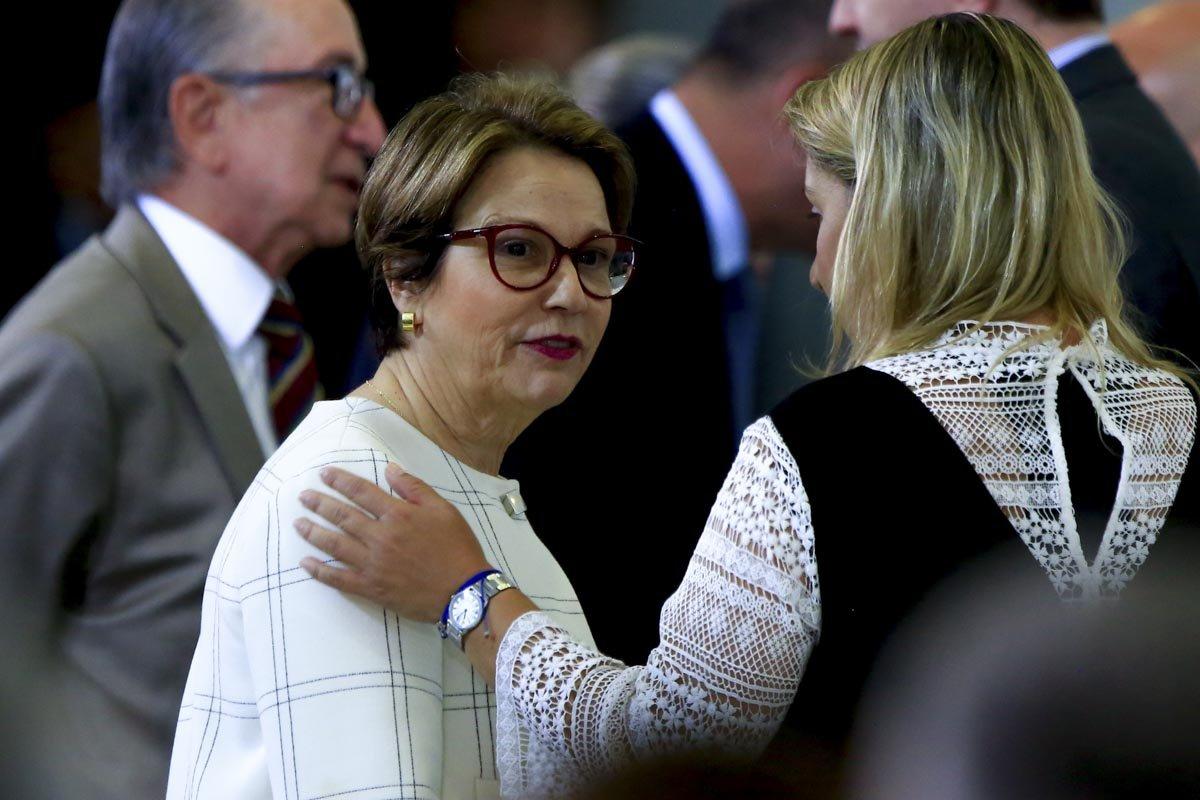 Foto: Rafaela Felicciano/Metrópoles