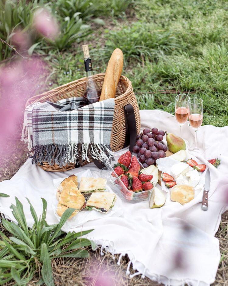 Wine picnic (4)