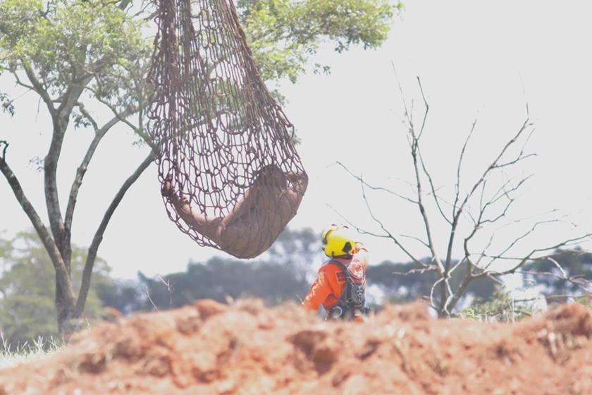 Resgate de corpos em Brumadinho