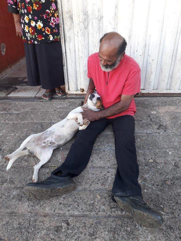 Cachorro do SAMU