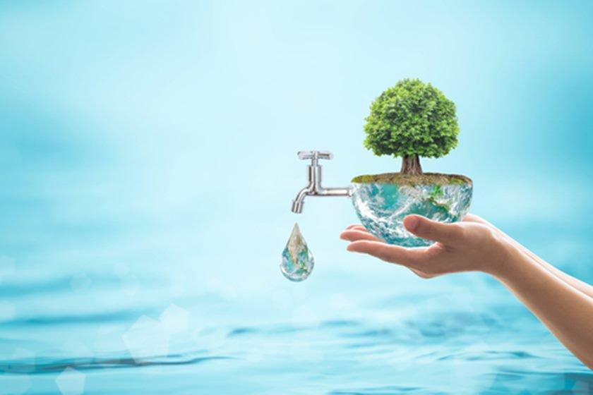 Água Orgânica/Divulgação