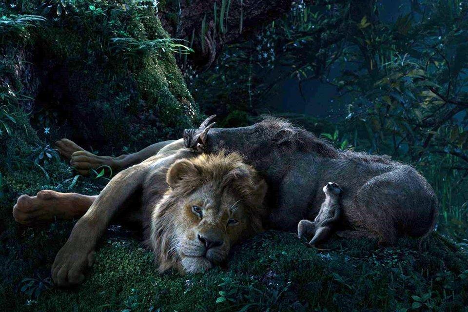 Resultado de imagem para o rei leão 2019 filme