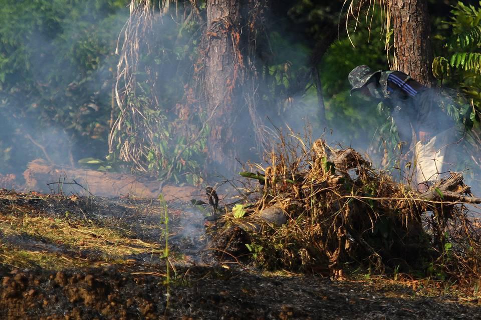 Comitiva de ministros vai à Amazônia se reunir com governadores