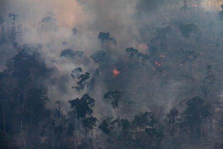 Segundo dados do Instituto Nacional de Pesquisas Espaciais (Inpe), entre agosto de 2019 e julho deste ano, os alertas de desmatamento na Amazônia tiveram aumento de 34,5%, na comparação com os 12 meses anteriores