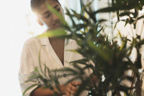 Mulher olhando para planta