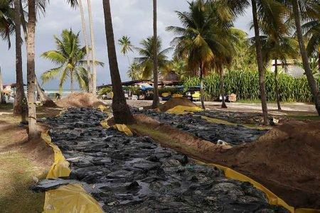 oleo nas praias