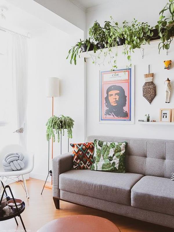 Sala de estar cheia de quatros e plantas