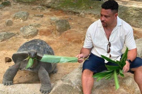 Ronaldo Fenômeno alimenta tartaruga