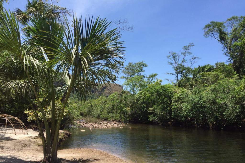 Rio e natureza