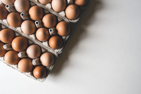 Bandejas de ovos