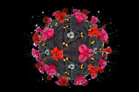 representação de um coronavírus