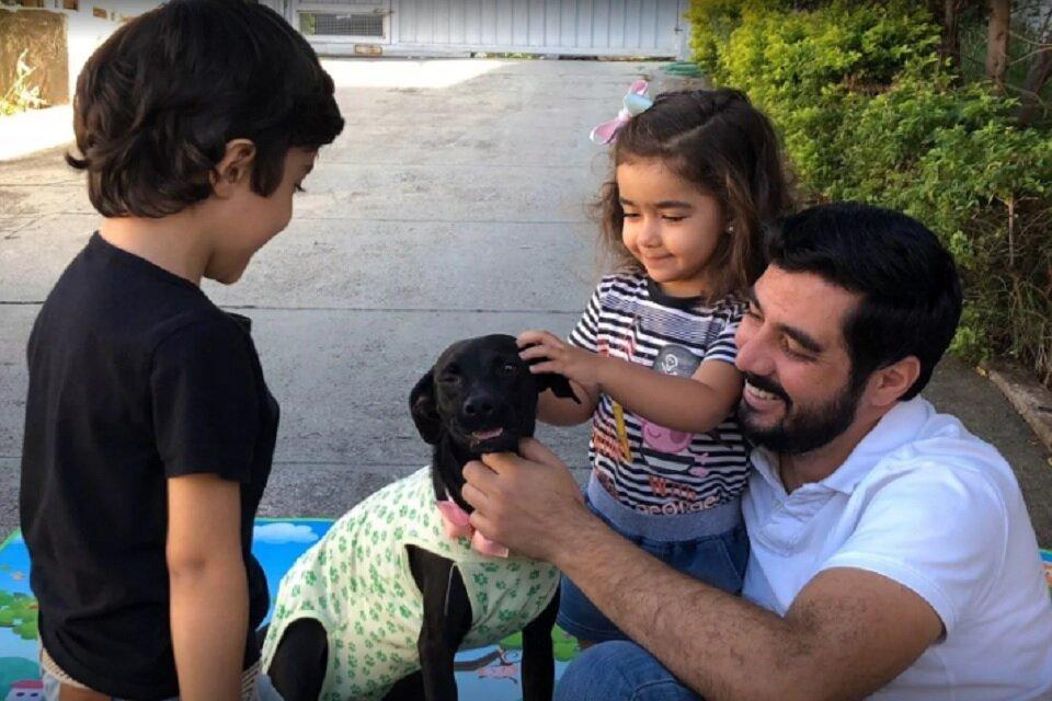 Família adota cachorro na quarentena