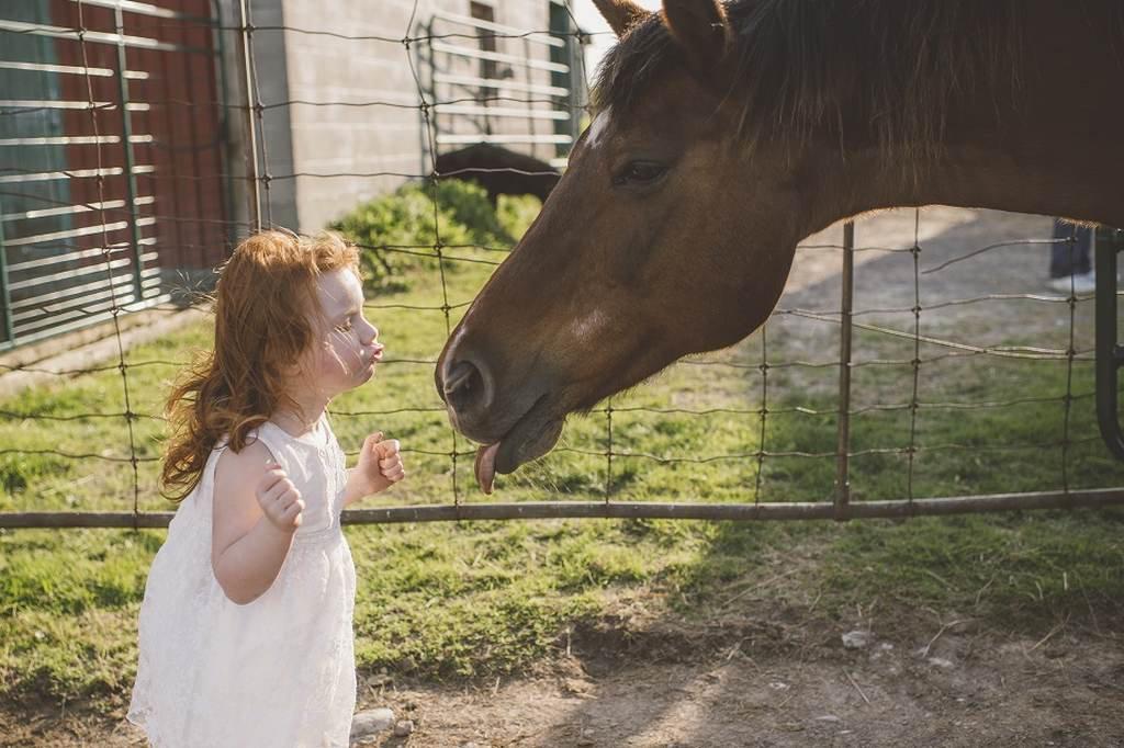 ensaio de crianças e animais