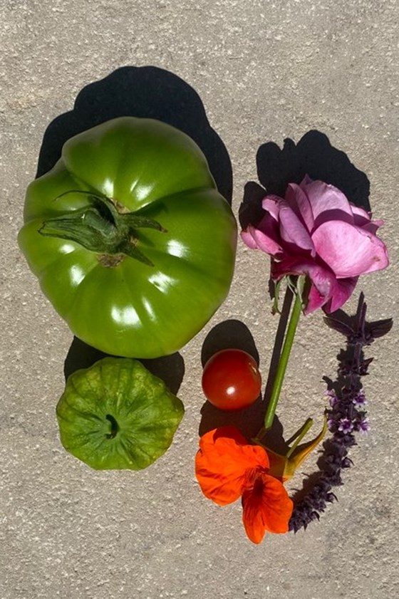 The composition of vegetables Kanye West