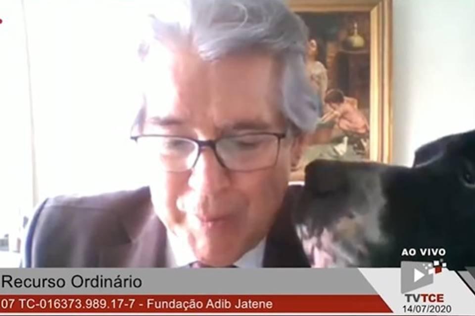 Conselheiro Antonio Roque Citadini