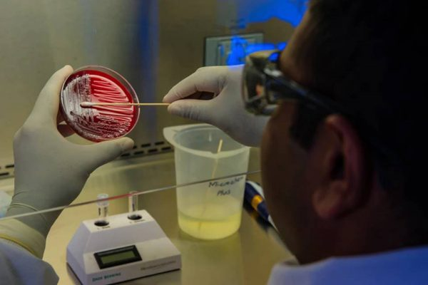 teste em laboratório covid-19