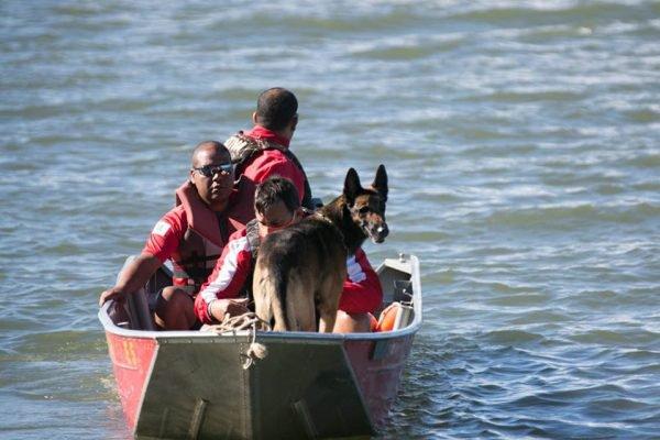 Bombeiros iniciam busca pelo advogado no lago Paranoá4