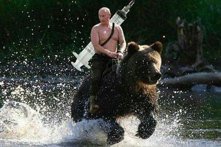 vladimir putin montado em urso com seringa nas costas